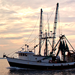 RedPort Halo Commercial Fishing